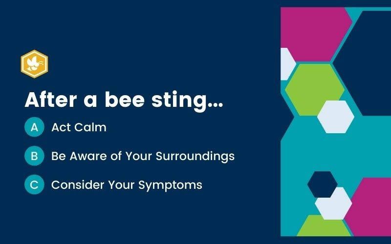 ABCs of Bee Stings